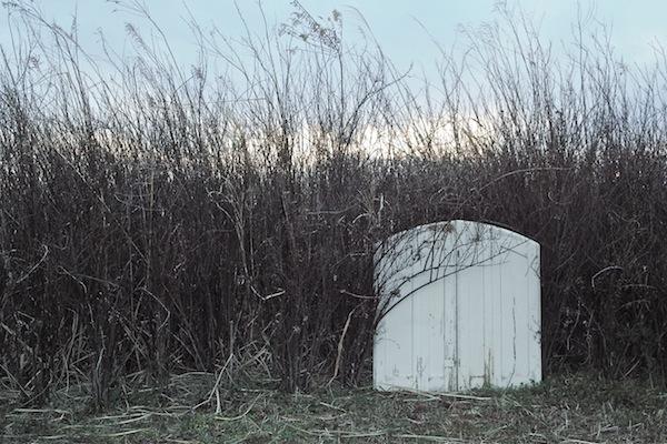 les volets et des champs