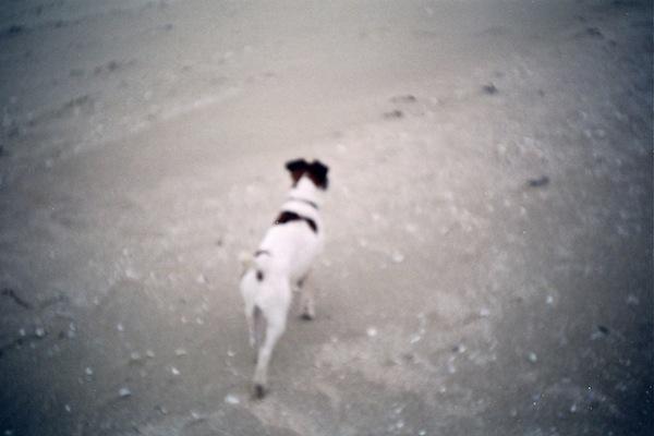 sur la sable
